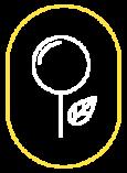 Icon-industria-italiana-filati-traceability